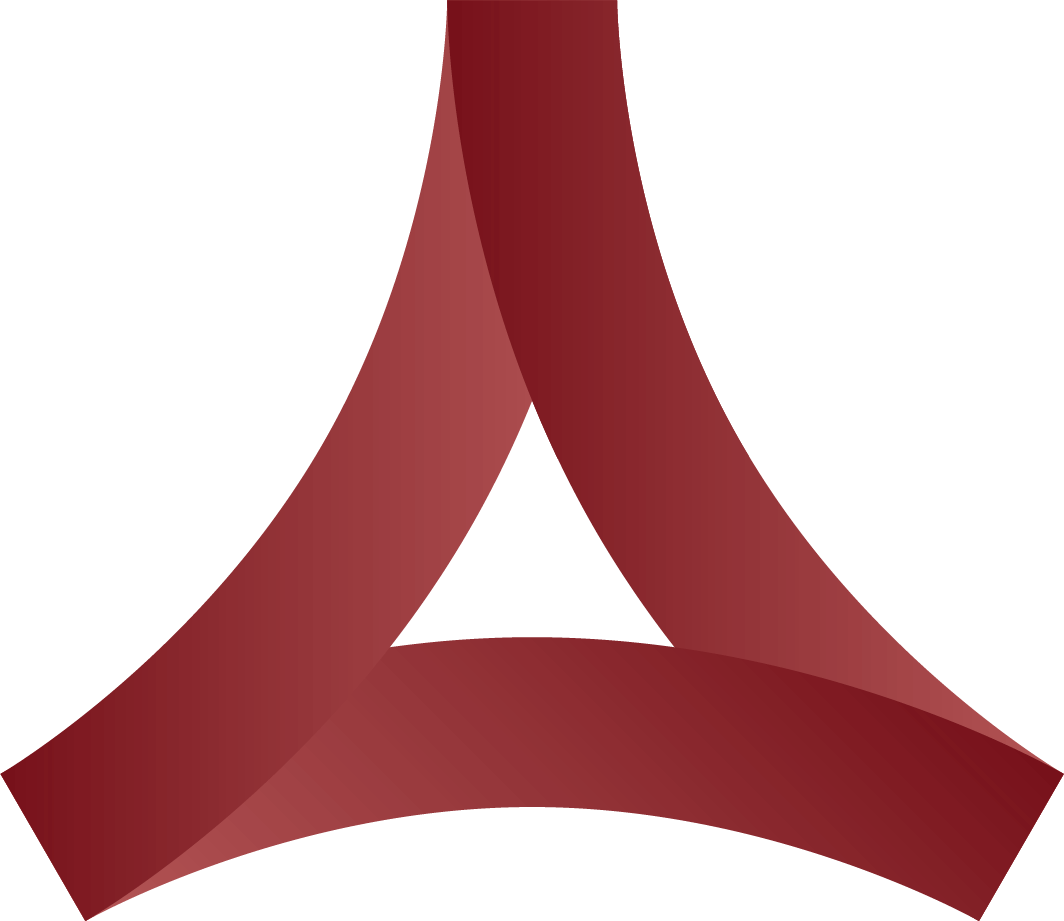 academy-consult-logo-rot